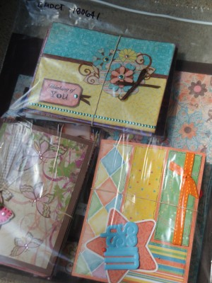 Sara Naumann Create & Craft project samples