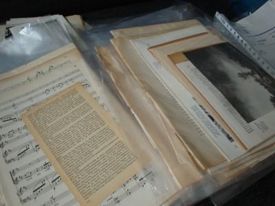 Sara Naumann blog collage packs