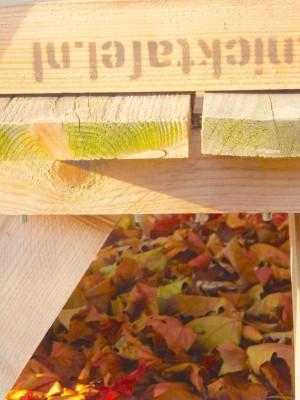 Sara Naumann blog Photo Friday picnic table