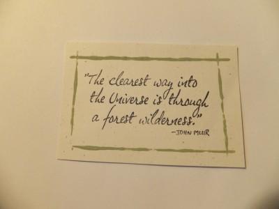 Sara Naumann blog framed quote