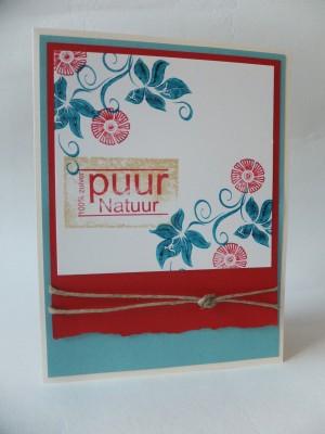 Sara Naumann blog Different Colors card