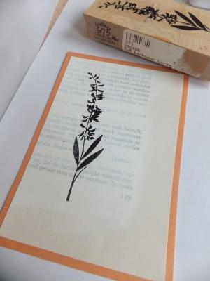Sara Naumann blog cardmaking stamping