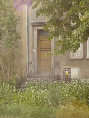 Sara Naumann blog mystery house
