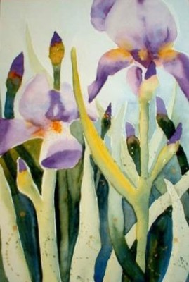 Sara Naumann blog Five Little Questions Cynthia Shelzig