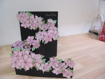 Sara Naumann blog Lynnda clematis samples 028