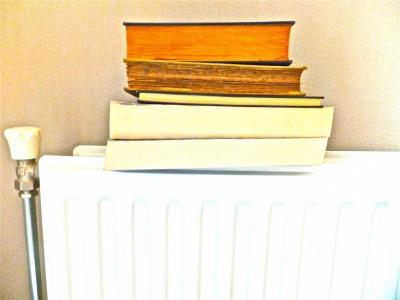 Sara Naumann blog books