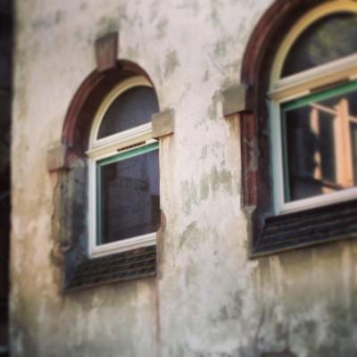 Sara Naumann blog window photo friday